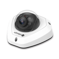 Vandal-proof IR Mini Dome Cameras - (Microphone / 15m IR / IK09 / IP67 ) 4MP